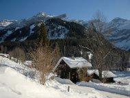Glacier-Alpes Vaudoises